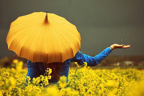 Prettyumbrella1